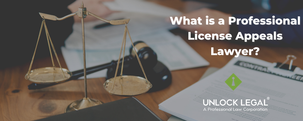 What is a professional license appeals lawyer